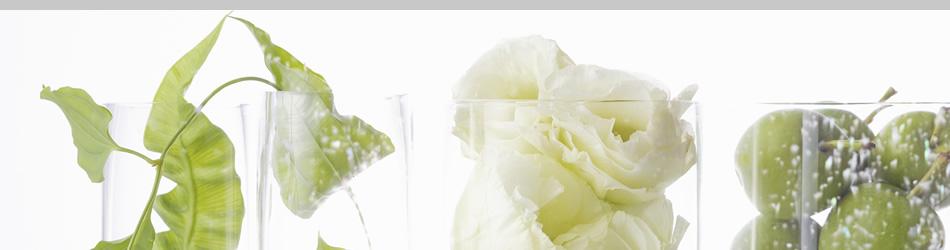 グリーンプラザ大和園 Rental green service & zouen 夢ある明日を応援します。